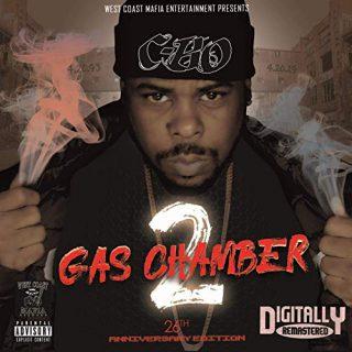 C-Bo - Gas Chamber 2