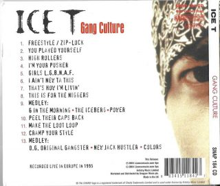 Ice-T - Gang Culture (Back)