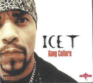 Ice-T - Gang Culture (Front)