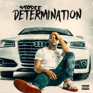 Spodee - Determination