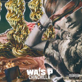 Wais P - Chinchilla